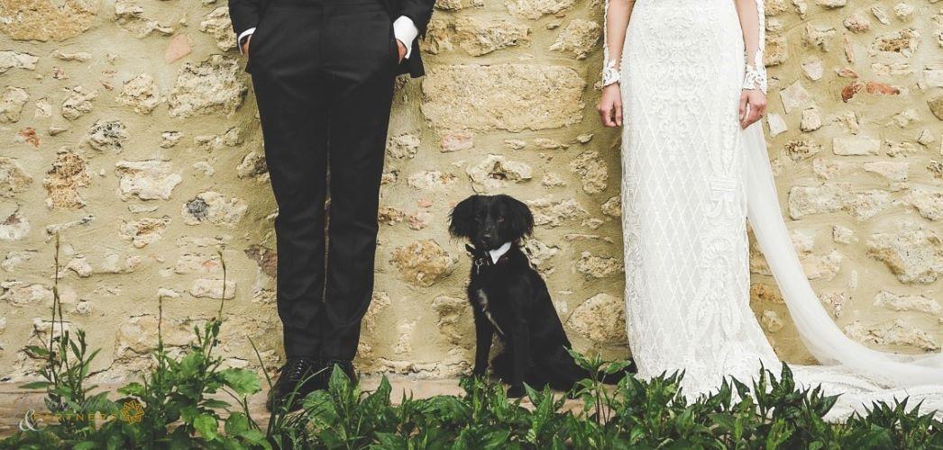 Heiraten mit Hund